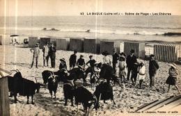 LA BAULE - SCENE DE PLAGE LES CHEVRES - La Baule-Escoublac