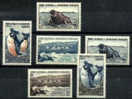 Tierras Australes Nº 2/7 Nuevos. Cat.51,40€ - Tierras Australes Y Antárticas Francesas (TAAF)