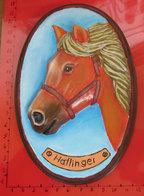 CAVALLO HORSE HAFLINGER GESSO DIPINTO - Andere