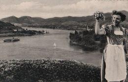 Unkel - Rhein Mit Siebengebirge - Ca. 1955 - Neuwied