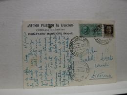 PIGNATARO MAGGIORE   -- NAPOLI  ---  ANTONIO PALUMBO FU CRESCENZO  -- CERALI  LEGUMI - Napoli