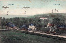 CPA Belgique - Montigny-le-Tilleul - La Gare De Bomerée & Son Panorama Avec Trains De Marchandises Ligne 132 En 1915 - Montigny-le-Tilleul