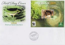 Papua New Guinea 2009 Frogs K10 Minisheet FDC  WWF - Papua New Guinea