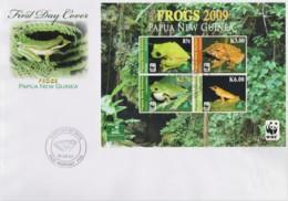 Papua New Guinea 2009 Frogs Minisheet FDC  WWF - Papua New Guinea