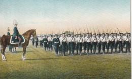 *** MILITARIA *** German Army Armée Allemande Deutche ***  N° 2084 / 20 - Guerre 1914-18