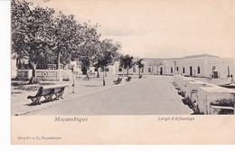MOZAMBIQUE(LAGO D ALFANDEGA) ARBRE - Mozambique