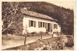 20-1628 SAN PELLEGRINO IN ALPE LUCCA - Lucca