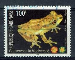 Gabon, Frog, Hyperolius Kuligae, Biodiversity, 2004, VFU - Gabon