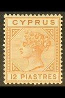 1892-94  12pi Orange-brown, SG 37, Fine Mint. For More Images, Please Visit Http://www.sandafayre.com/itemdetails.aspx?s - Cyprus