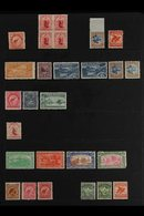 1899-1909 MINT COLLECTION  On Stock Pages, Includes 1899-03 6d Rose, 1902 1d No Wmk Perf 14 Block Of 4, 1902-07 Perf 11  - New Zealand