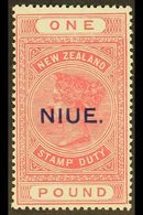 1918-29  £1 Rose- Pink On Cowan Paper, SG 37c, Never Hinged Mint. For More Images, Please Visit Http://www.sandafayre.co - Niue