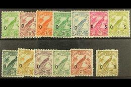 1932-34 OFFICIALS  Set, SG O42/54, Fine Mint. (13) For More Images, Please Visit Http://www.sandafayre.com/itemdetails.a - Papua New Guinea