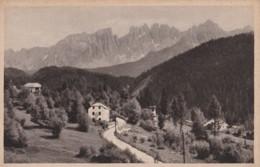 AP07 Partie Im Eggental Gegen Latemar, Sudtirol - Italy
