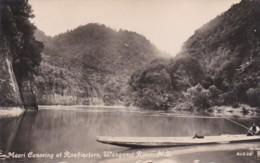 4800137 Maori Canoeing At Ruahinetoro, Wanganui River. (photo Card) - Nouvelle-Zélande