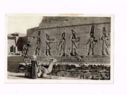 The Tempel Of Opet.Karnak. - Egypt
