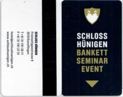 Schloss Hünigen Konolfingen, CH-2464-----key Card, Room Key, Schlusselkarte, Hotelkarte - Chiavi Elettroniche Di Alberghi
