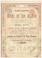Action Ancienne - Sté Anonyme Des Mines Du Rio Blanco - Titre De 1899 - Mijnen
