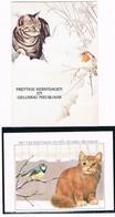 2 Cartes Chat Et Oiseau - Cat Bird -katze - Poes En Vogel - Katten