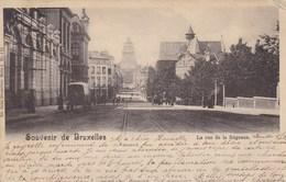 Souvenir De Bruxelles, La Rue De La Régence (pk65209) - Avenues, Boulevards