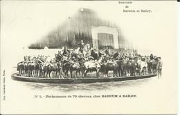 * Souvenir De Barnum Et Bailey , Performance De 70 Chevaux Chez BARNUM & BAILEY , 1902 - Cirque