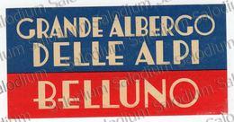 Grande Albergo Delle Alpi - BELLUNO - Etichetta Hotel - Luggage Label - Adesivi Di Alberghi