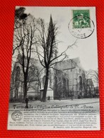 DENDERMONDE  -  TERMONDE  - L'Eglise Collégiale De Notre Dame - Dendermonde