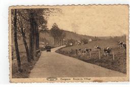 Targnon  Entrée Du Village (toestand Zie Scans) - Stoumont