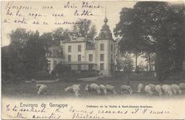 Environs De Genappe  *   Chateau De La Hutte à Sart-Dames-Avelinnes  (Nels) - Genappe