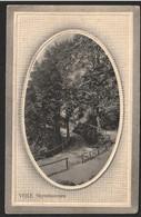 AK VEJLE, Skyttehusvejen Als Feldpost Gelaufen 1917 ( 367 ) - Dänemark