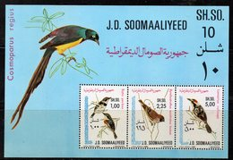 ETP415 - SOMALIA 1980 , Souvenir Sheet BF N. 9 (Michel 10) ***  Uccelli Birds - Somalia (1960-...)
