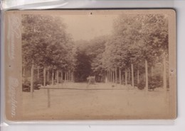 1890  GAASTERLAND R LAMMERS DRACHTEN HOLLAND NEDERLAND 16*10CM ALBUMEN Cabinet  Photograph - Fotos