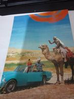 ISRAELE ISRAEL NEGEV CAMMELLO E AUTO  CAR CABRIO SPORT COUPE MODEL  ENGLISH ? N1975   HH2184 - Israele