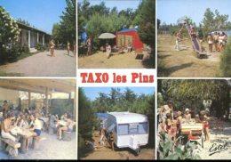 66 - Argelès Sur Mer - Taxo Les Pins : Camping-Caravaning - Autres