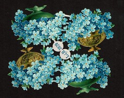 Littauer & Boysen L & B N° 3920 - SCRAP -  DECOUPIS  - Gaufré / Embossed - Flowers / Myosotis / Forget-me-not - 2 Scans - Flowers
