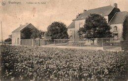 Wasseiges  Chateau De Mr.Jullet Pas En Bonne état Circulé En 19??? - Wasseiges
