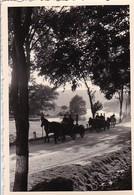 Foto Deutsche Soldaten - Pferdegespanne Mit Feldküchen - 2. WK - 8,5*5,5cm  (45349) - Guerra, Militari