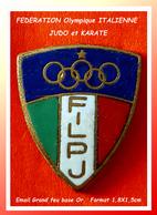 SUPER PIN'S JUDO : COMITE OLYMPIQUE, FEDERATION ITALIENNE De JUDO Et KARATE En émail Grand Feu Base Or,  1,8X1,5cm - Judo