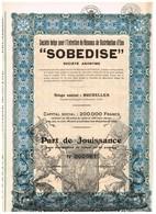 """Titre Ancien - Sté Belge Pour L'Entretien De Réseaux De Distribution D'Eau """"SODEBISE"""" - Titre De 1939 - - Water"""