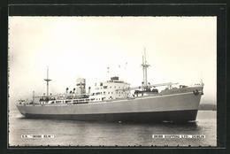AK Handelsschiff S.S. Irish Elm, Irish Shipping Ltd. - Koopvaardij