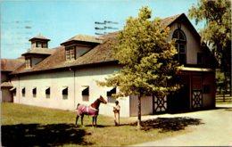 Kentucky Lexington Castleton Farm Saddle Horse Barn 1956 - Lexington