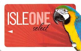 Isle Of Capri Casino Multi-Locations - BLANK IsleOne Player Slot Card - No Copyright Date - Casino Cards