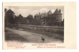 58 NIEVRE - SAINT AUBIN LES FORGES Château De Frasnay Les Chanoines - Frankreich
