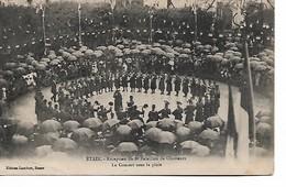 ETAIN - Réception Du 8eme Bataillon De Chasseurs - Le Concert Sous La Pluie - Etain