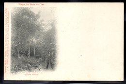 BOIS DE CISE 80 - Plage Du Bois De Cise - Publicité Theulot - #B343 - Bois-de-Cise