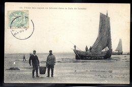 BAIE DE SOMME 80 - Pêche Des Coques Ou Hénons - #B345 - Autres Communes