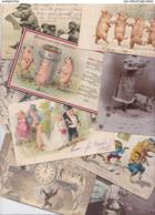 Lot 2287 De 10 CPA Cochon Pig Déstockage Pour Revendeurs Ou Collectionneurs - 5 - 99 Cartoline