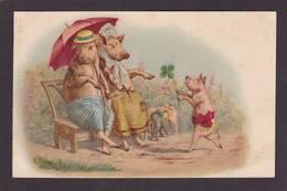 CPA Cochon Pig  Non Circulé - Pigs