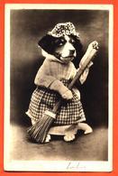 CPA Chien Habillé En Femme De Ménage - Animali Abbigliati