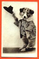 CPA Chien Habillé En Costume Tailleur - Dressed Animals
