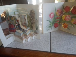 10 Cp  Carte A Systeme Theatraliser - Postcards